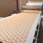 Băng tải Cotton - Băng tải bánh kẹo