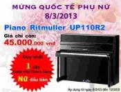 Đàn Piano Ritmuller UP110R2