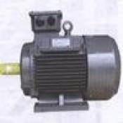 Động cơ motor TECO
