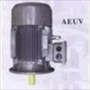 Motor TECO AEUV mô tơ động cơ điện Teco